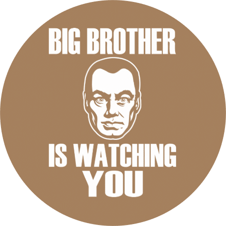 telematics big brother
